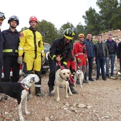 La Nucía, referente en formación de perros de rescate