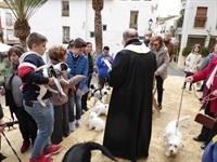 La Nucia Sant Antoni Bendicion 1 2019